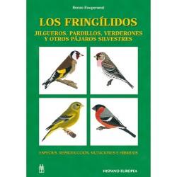Los Fringílidos