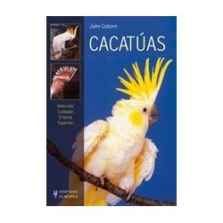 Cacatuas