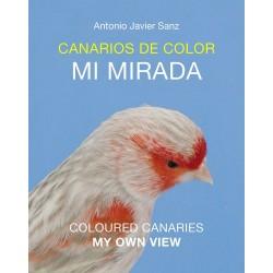 Canarios de Color, Mi Mirada