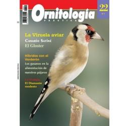 Ornitología Práctica 22