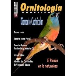 Ornitología Práctica 46