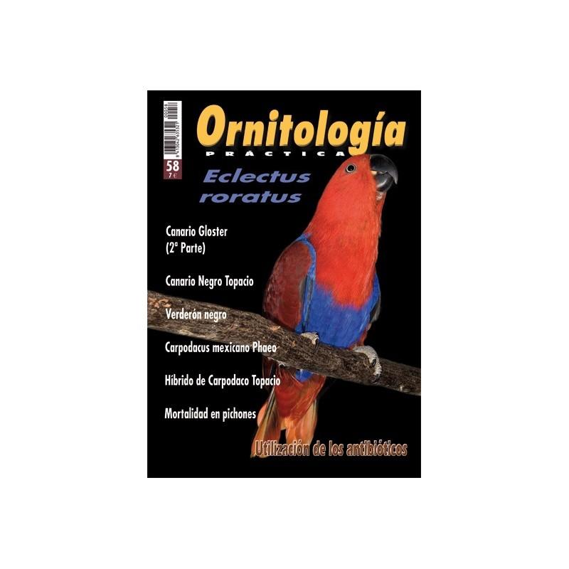 Ornitología Práctica 58