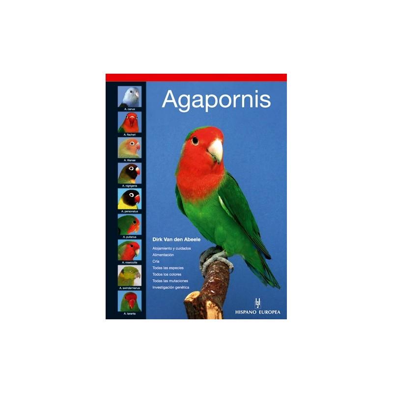 Agapornis - Van den Abeele, Dirk